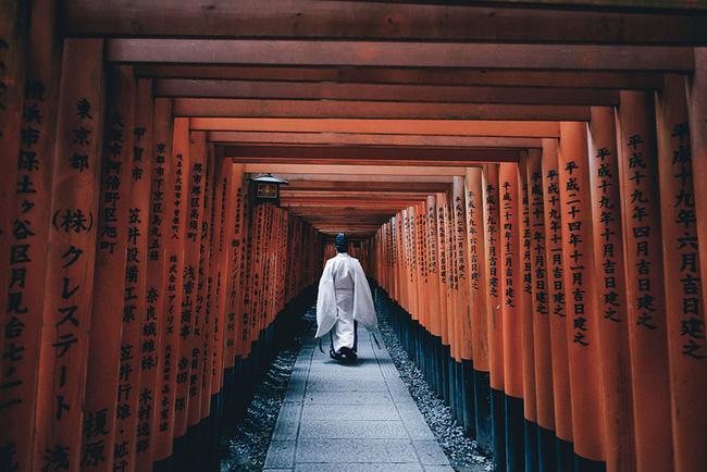 Một vẻ đẹp hiện thực Nhật Bản: Xứ sở này đâu chỉ có hoa anh đào? - Ảnh 10.