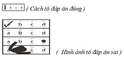 du-hoc-nhat-ban-havico-ky-thi-nang-luc-tieng-nhat-nattest-4