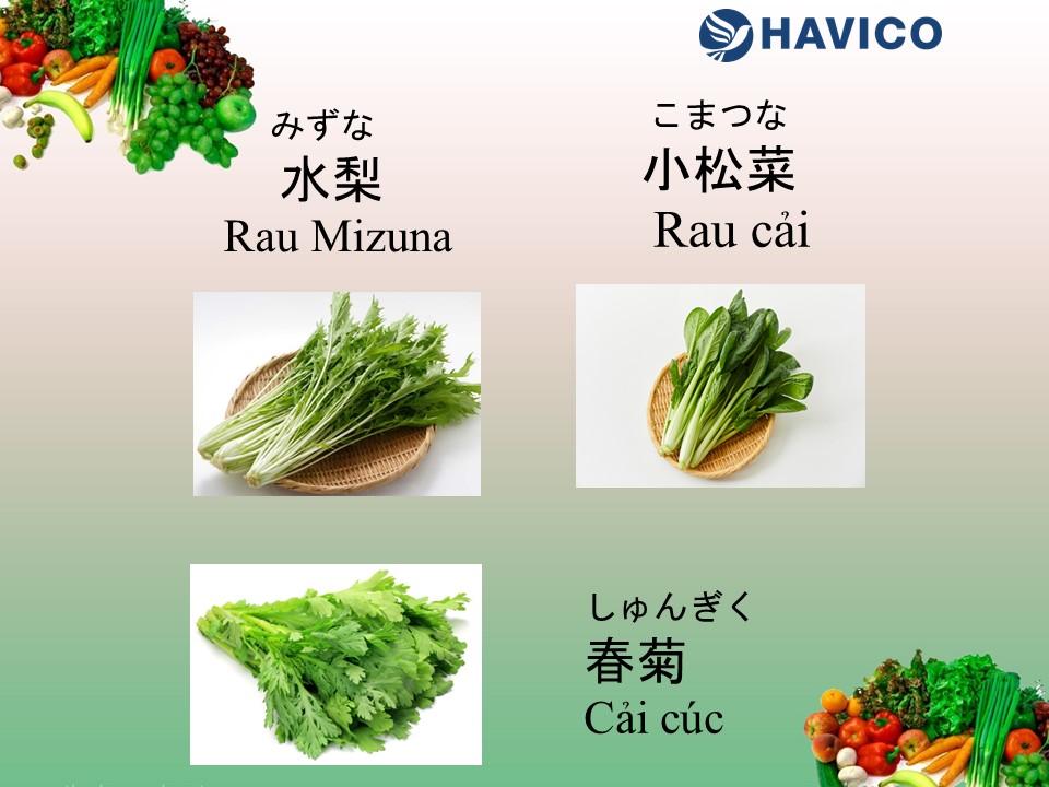 Từ vựng tiếng Nhật: Chủ đề rau củ