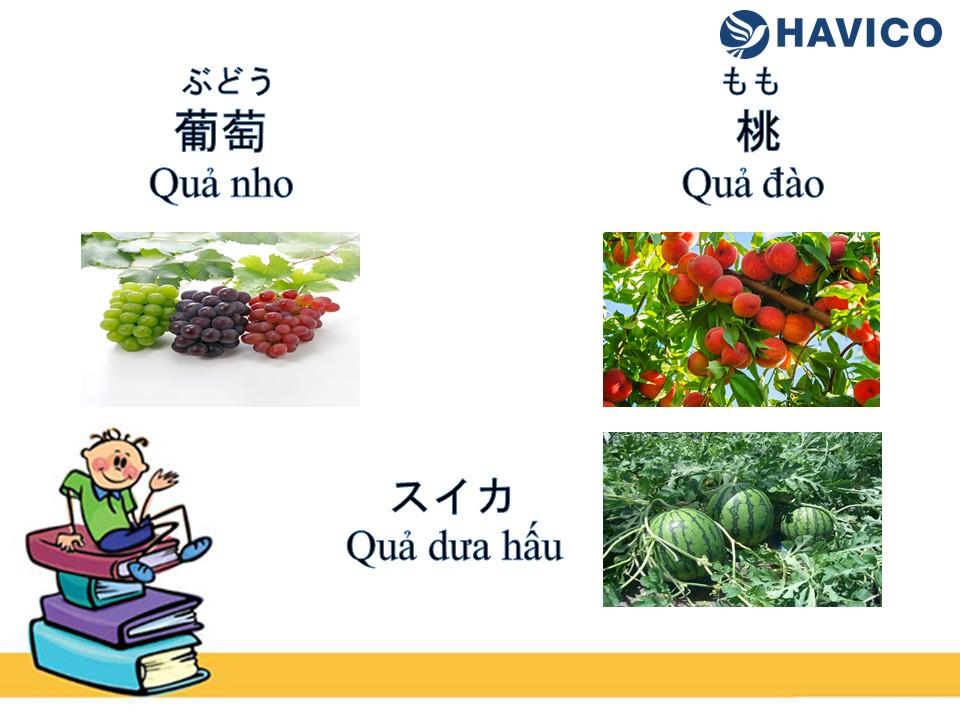 Từ vựng tiếng Nhật: Chủ đề hoa quả